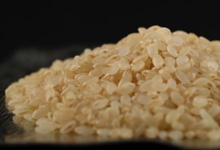 金芽「ロウカット」玄米