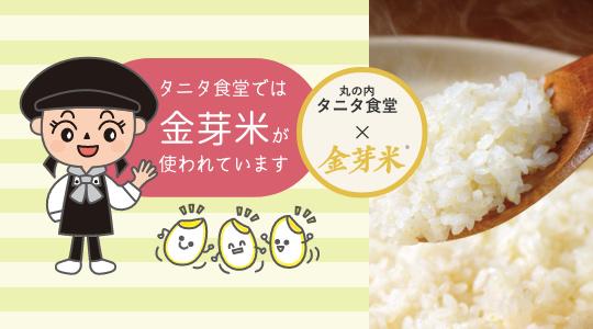 タニタ食堂の金芽米