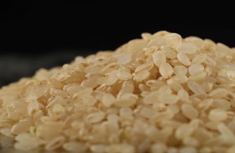 金芽ロウカット玄米の開発